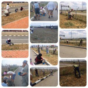 Социальные работники ГКУ «КЦСОН» Ачхой-Мартановского района продолжают участвовать в общественных субботниках.